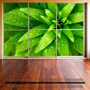 Zielone liście - dekoracja na szafę