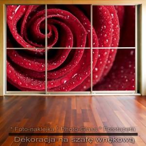 Czerwona róża - dekoracja na szafę