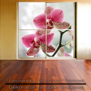 Storczyki - dekoracja na szafę
