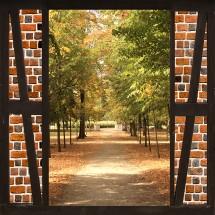 Fototapeta drzwi do ogrodu