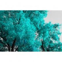 Fototapeta turkusowe liście