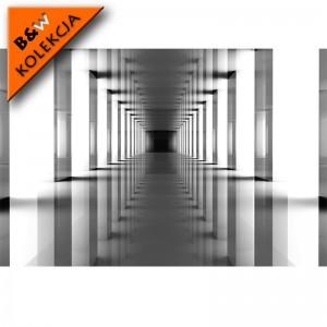 Fototapeta przestrzenna - czarno biały Tunel