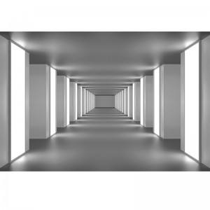 Fototapeta tunel - Blokowiec