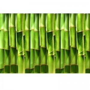 Bambusowa ściana