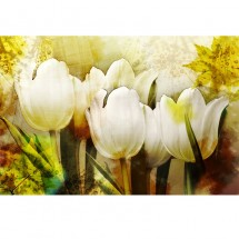 Fototapeta tulipany - retro