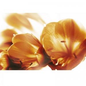 Kwiatowy brąz