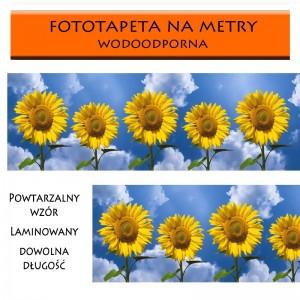 Słoneczniki Fototapeta laminowana