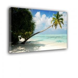 Plaża nr 2174