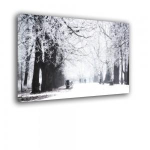 Zimowy sen nr 2278