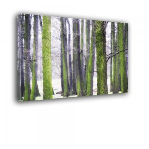 Zimowy las nr 2423