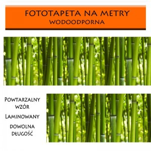 Fototapeta bambusy
