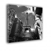 Paryżanka nr 2354