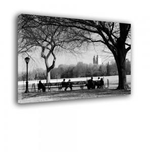 Spacer w parku nr 2381