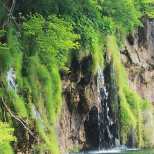 Fototapeta wodospad | Skały | Trawa