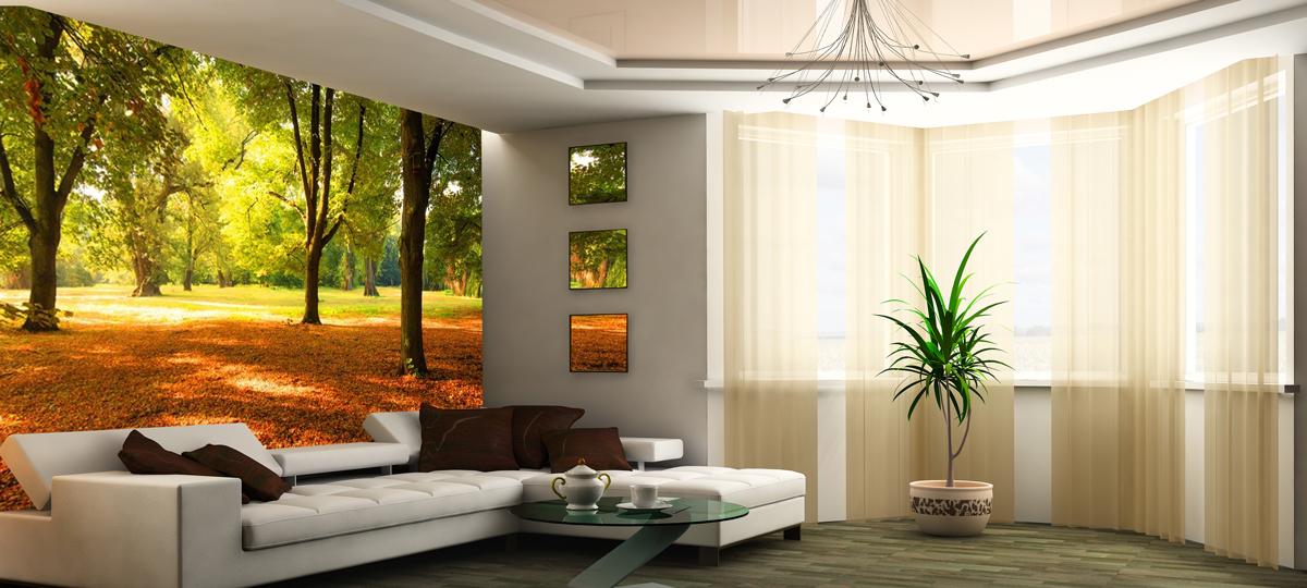 Fototapeta do salonu na wymiar ściany