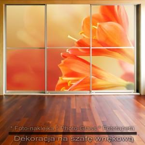 Ożywcze kwiaty - dekoracja na szafę
