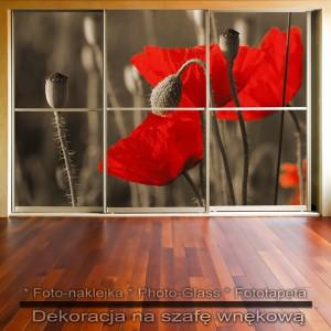 Czerwień Maków - dekoracja na szafę
