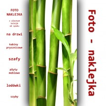 Foto-naklejka - bambus