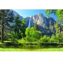 Zielony raj