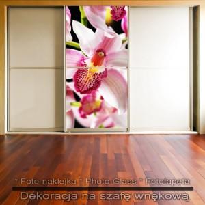 Orchidea - dekoracja na szafę