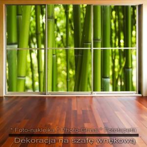 Bambusy - dekoracja na szafę
