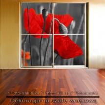 Czerwieńce - dekoracja na szafę