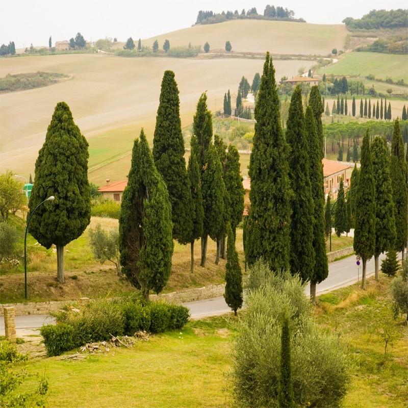 Włoskie klimaty