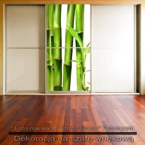 Bambus - dekoracja na szafę