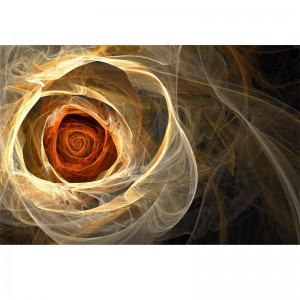 Fototapeta dusza róży