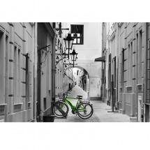 Fototapeta rower