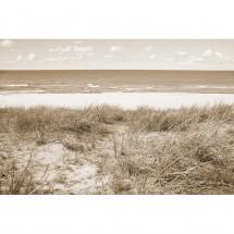 Fototapeta morze Bałtyckie