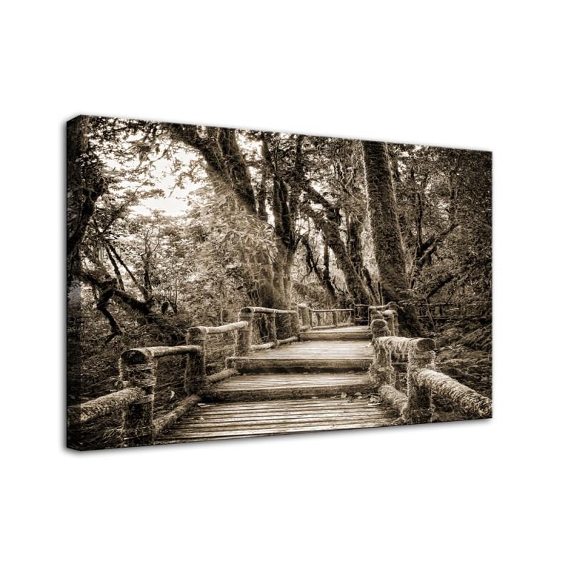 Obraz  na ścianę drewniane schody w lesie