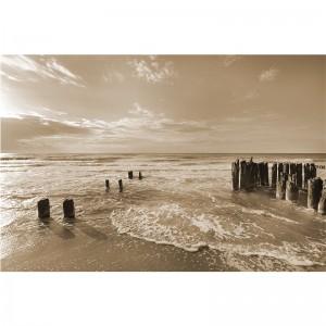 Fototapeta w sepii z morzem