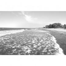 Fototapeta wybrzeże - Bałtyk - czarno biała