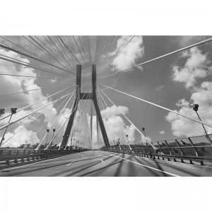 Fototapeta Wrocław - most Rędziński