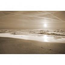 Fototapeta brzeg morza