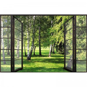 Fototapeta okno z widokiem na brzozy