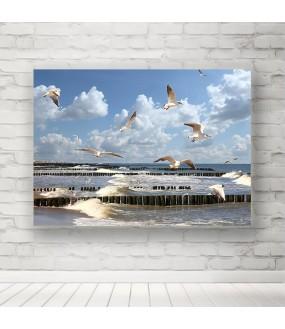 Plakat Morze Bałtyckie