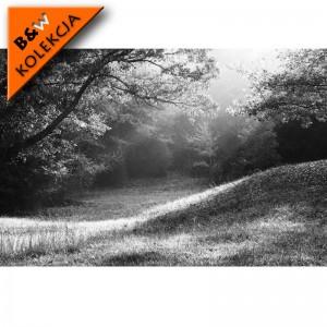 Fototapeta polana - czarno biała