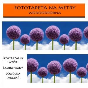 Fototapeta laminowana z kwiatami czosnku