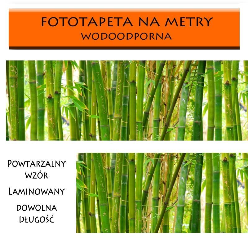 Fototapeta laminowana bambusy na wymiar ściany
