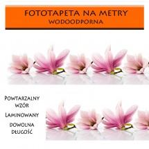 Magnolie - fototapeta do kuchni