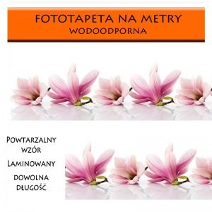 Fototapeta laminowana Magnolie