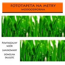 Zielona trawa - fototapeta zmywalna do kuchni