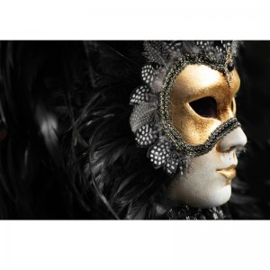 Fototapeta maska karnawałowa  z piórami