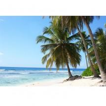 Fototapeta tropiki plaża