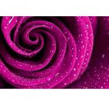 Aranżacja salonu z fototapetą o motywie różowej róży