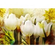 Fototapeta vintage tulipany