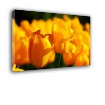 Ozdoba ściany w formie obrazu tulipany nr 2034