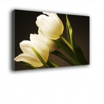 Tulipany nr 2202